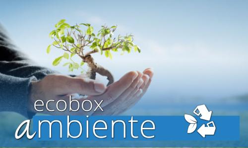ecobox-ambiente