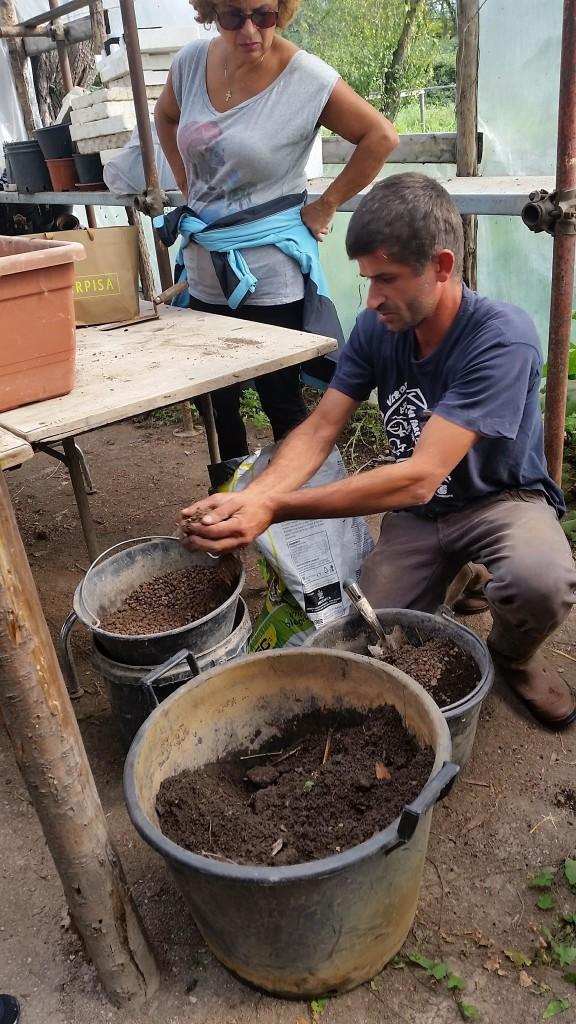 preparare terriccio fertile e adatto orto legambiente